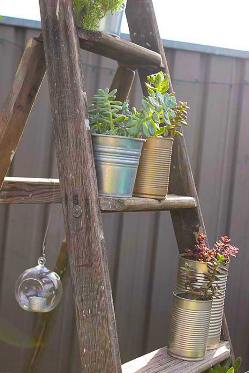 Event prop hire rustic wooden ladder large